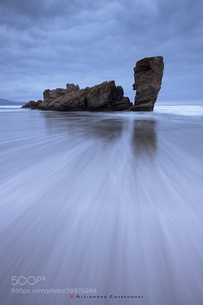 Photograph Tortuga by Alejandro Casasnovas on 500px