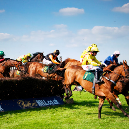 British Steeplechase Race