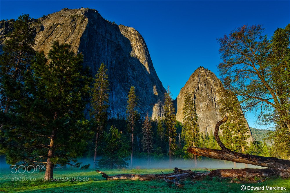 Photograph Meadows at Sunrise - Yosemite by Edward Marcinek on 500px