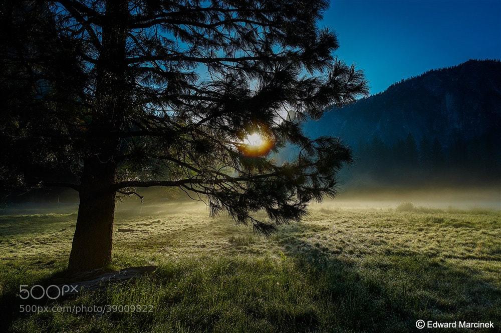 Photograph Foggy Sunrise - Yosemite Valley by Edward Marcinek on 500px