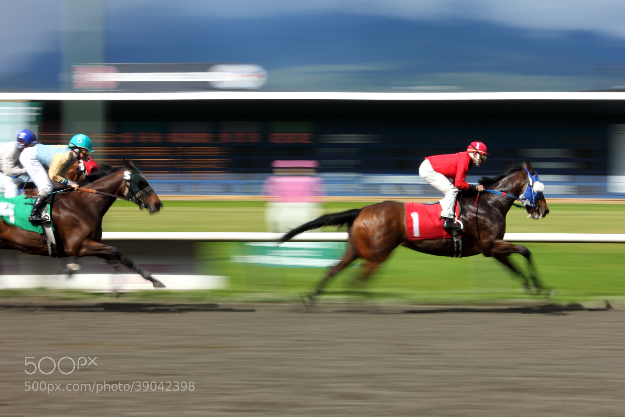 Photograph Horse race by Lisa Ireton on 500px