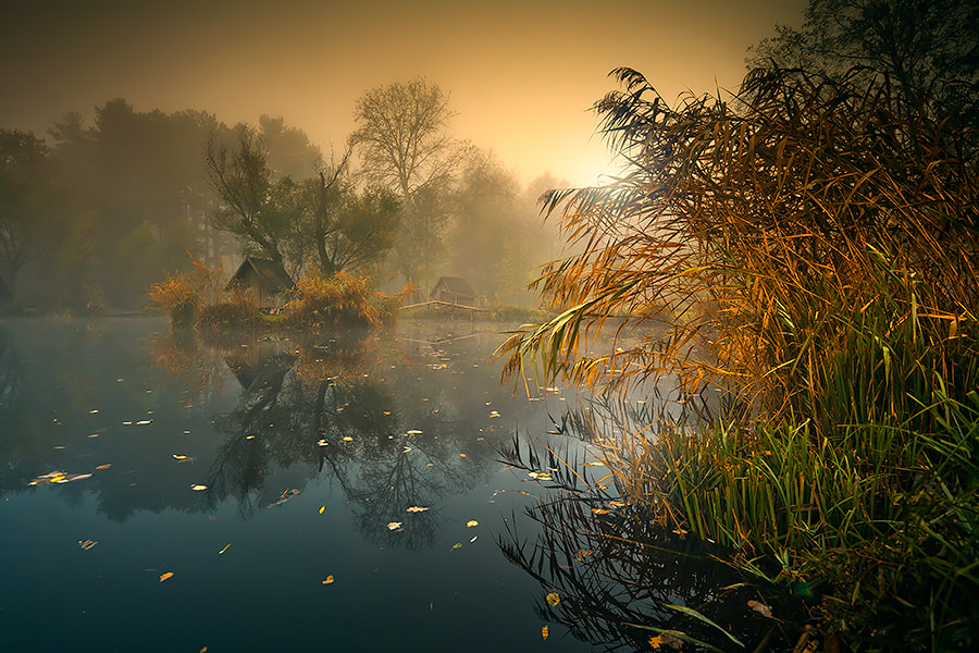 Photograph safe haven by Adam Dobrovits on 500px