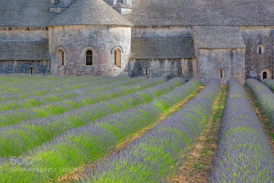 "Photograph ""Senanque Abbey"" by Jim Nilsen on 500px"