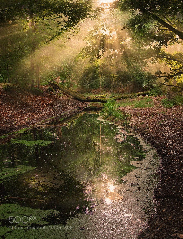 Photograph beam me up by Patrick Strik on 500px