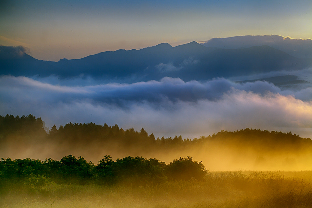 Photograph Colours in the morning by Martin Sprušanský on 500px
