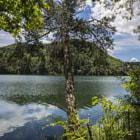 Montiggler See, South Tirol, Italy, Alto Adige