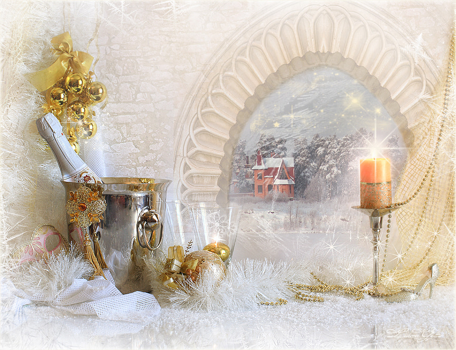 Photograph Happiness and Peace, dear friends! Merry Christmas! by Luiza  Gelts -            Луиза  Гельтс on 500px