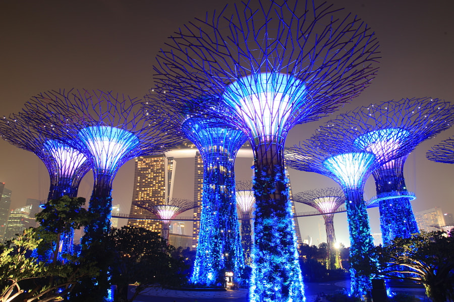 Blue (Avatar) SuperTrees