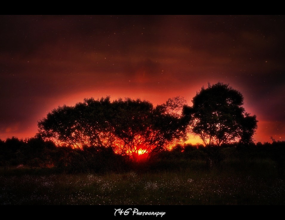 Photograph Dawn approaches  by T&G Photography  on 500px