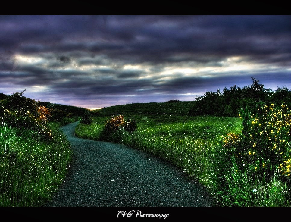 Photograph Pathway to beyond by T&G Photography  on 500px