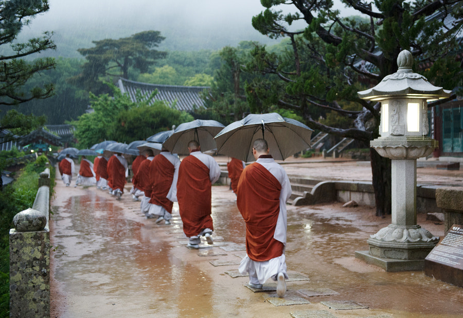 Photograph Monks in a rainy day by Sung Chul Park on 500px