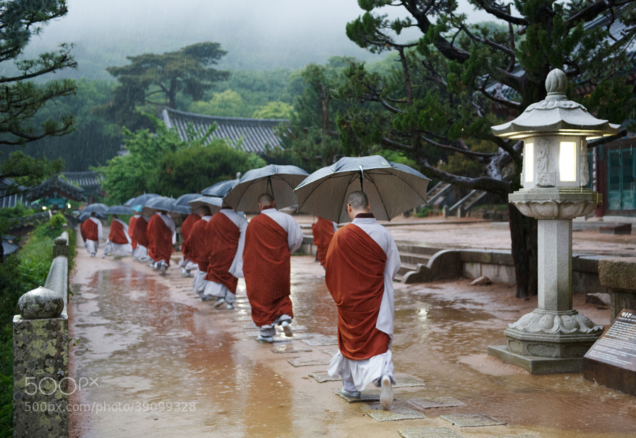 Monks in a rainy day by Sung Chul Park on 500px.com