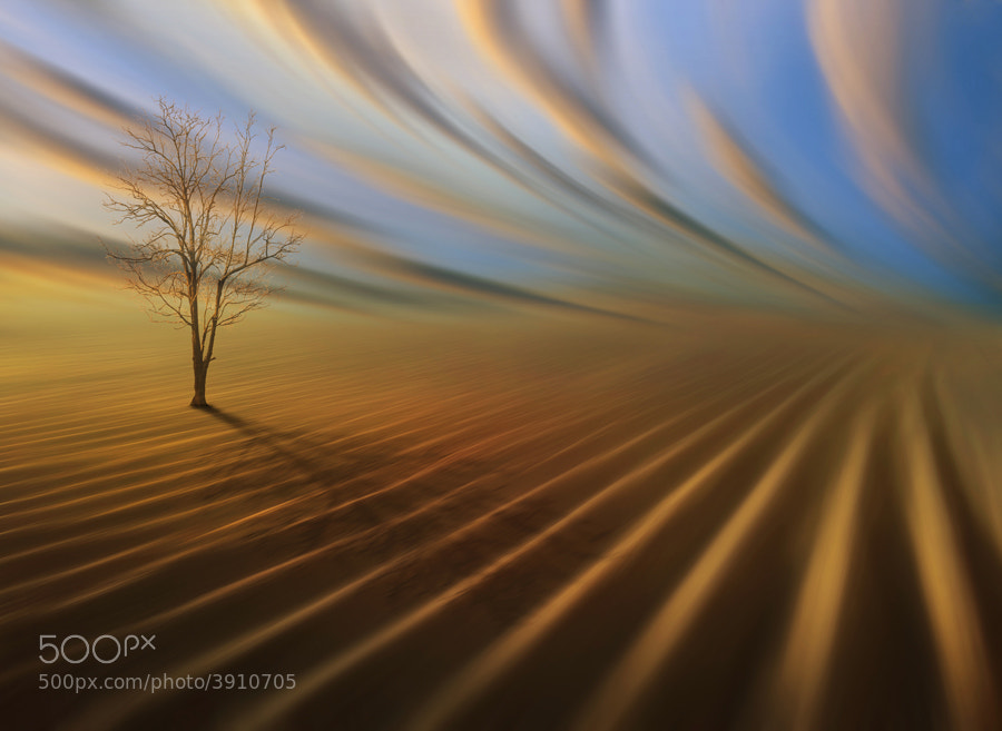 Photograph Alone by Ketut Manik on 500px