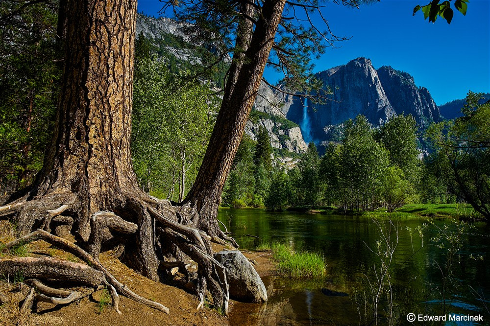 Photograph Merced River and Yosemite Falls by Edward Marcinek on 500px