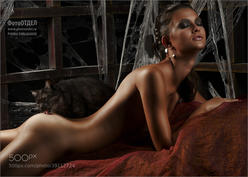 Photograph Кот Баюн (неизданные сказки) by Roman Bolshakov on 500px