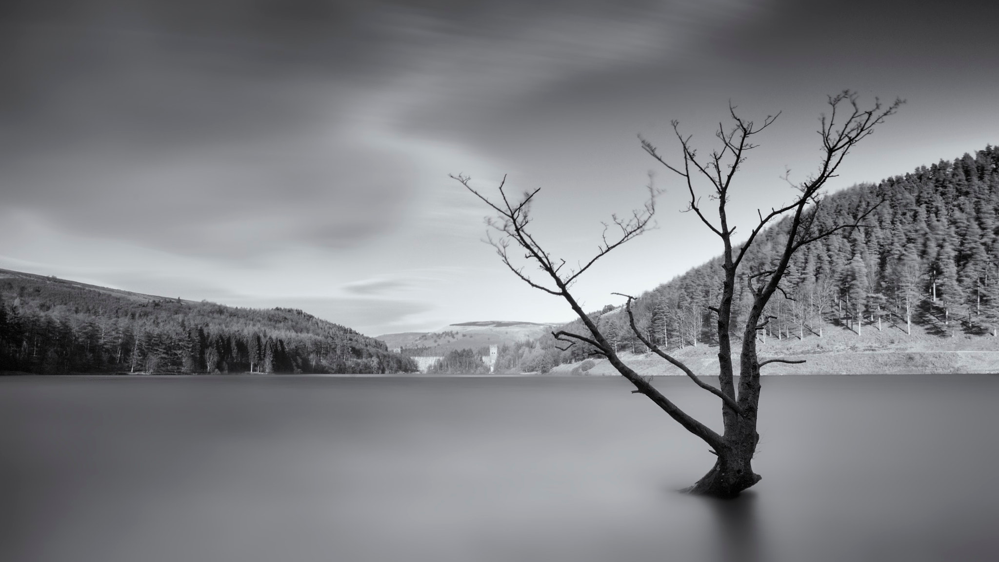 Photograph Reaching out; Derwent Reservoir by Duncan Green on 500px