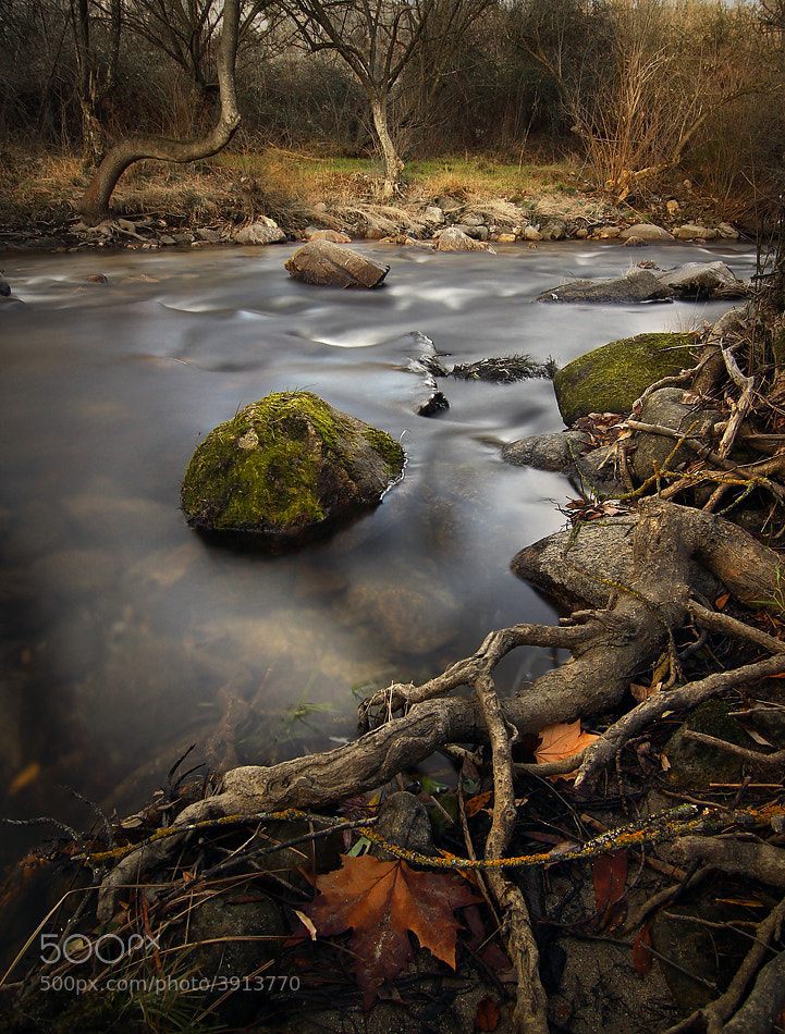 Photograph River002 by Amador  on 500px