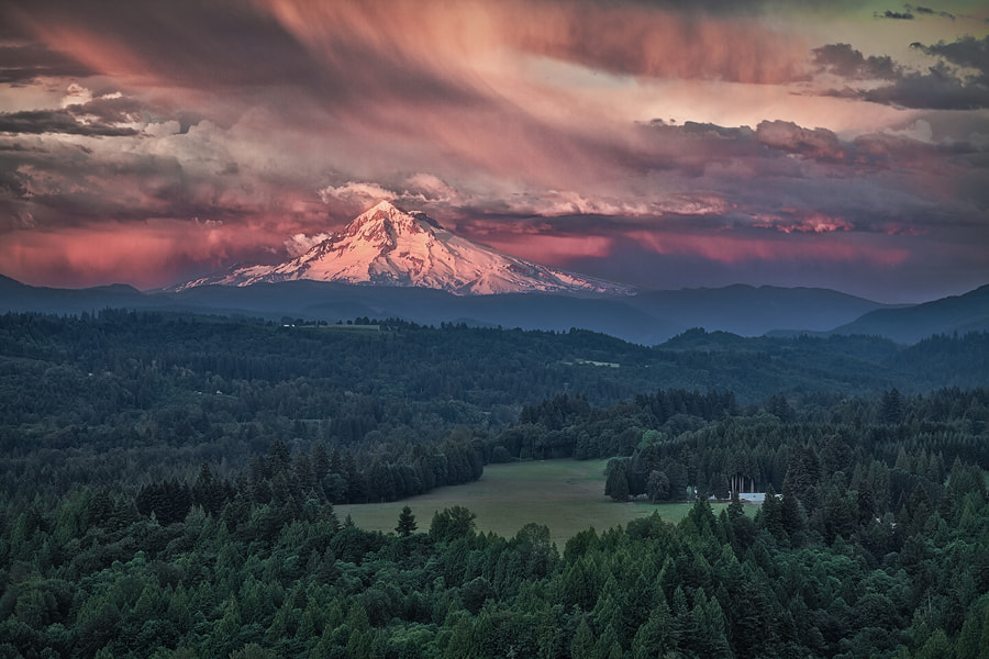 Photograph Window on the Apocalypse by Tula Top on 500px