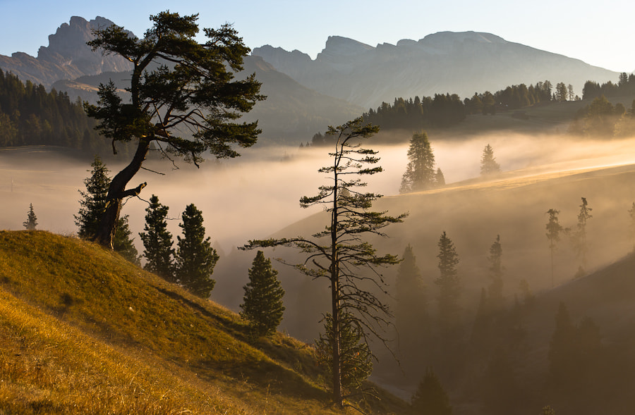 Photograph Morning Light Dolomites by Hans Kruse on 500px