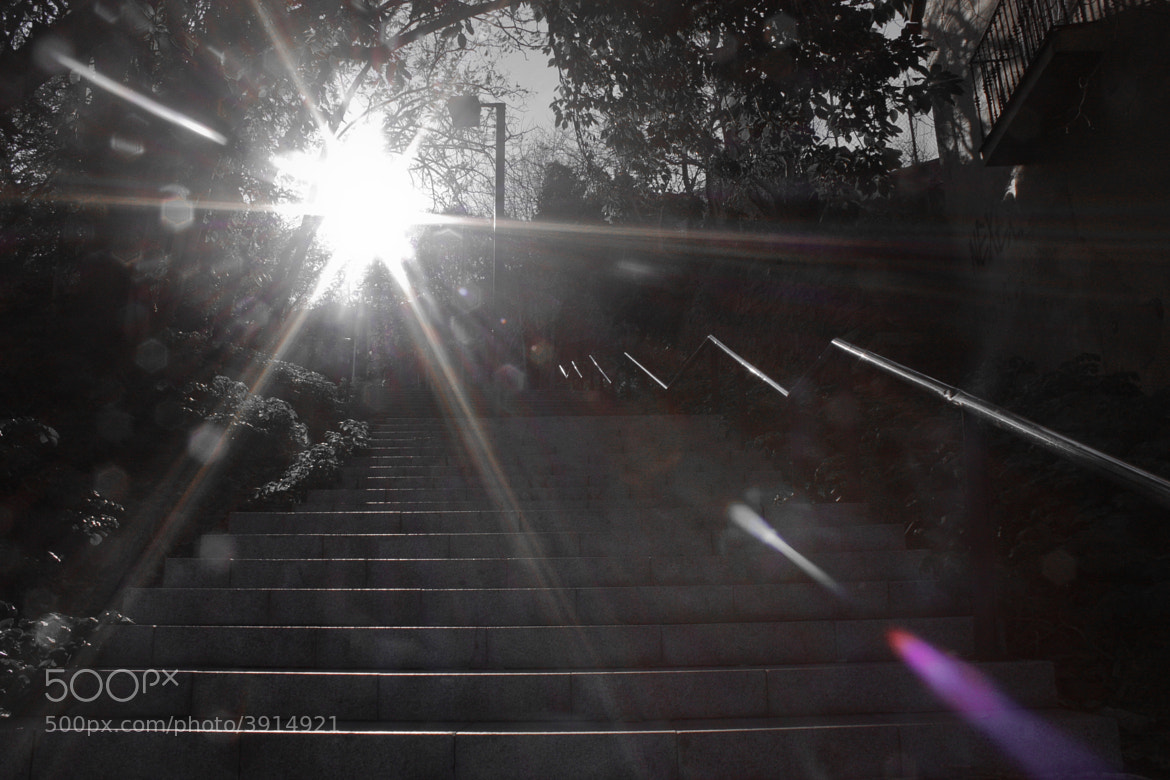 Photograph stairs, sun by Yaniv Azoulay on 500px