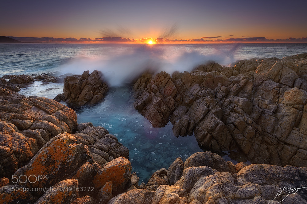 Photograph Salute to the Sun by Hillary Younger on 500px