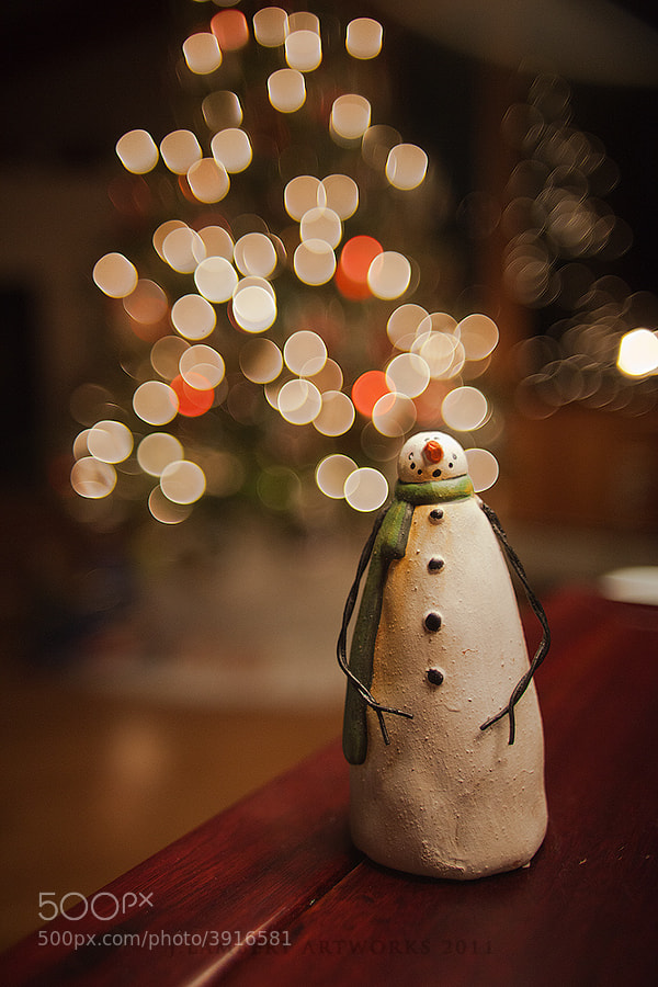 Photograph Holiday Snowman by  Jason Lambert on 500px