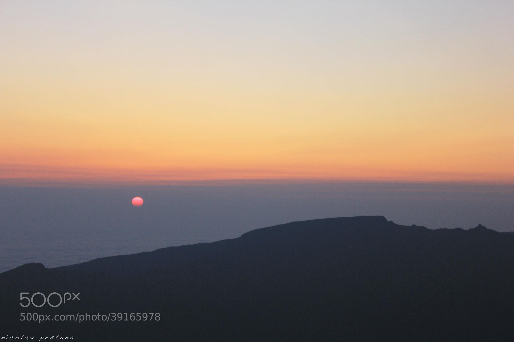 Photograph Sunrise - Madeira by nicolau pestana on 500px