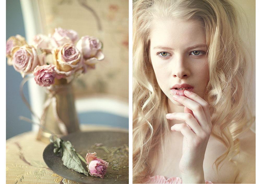 Photograph rose by mariya Krasovskaya on 500px