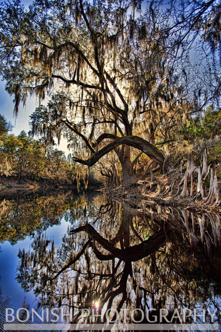 Photograph Reflections on the Suwannee by Pat Bonish on 500px