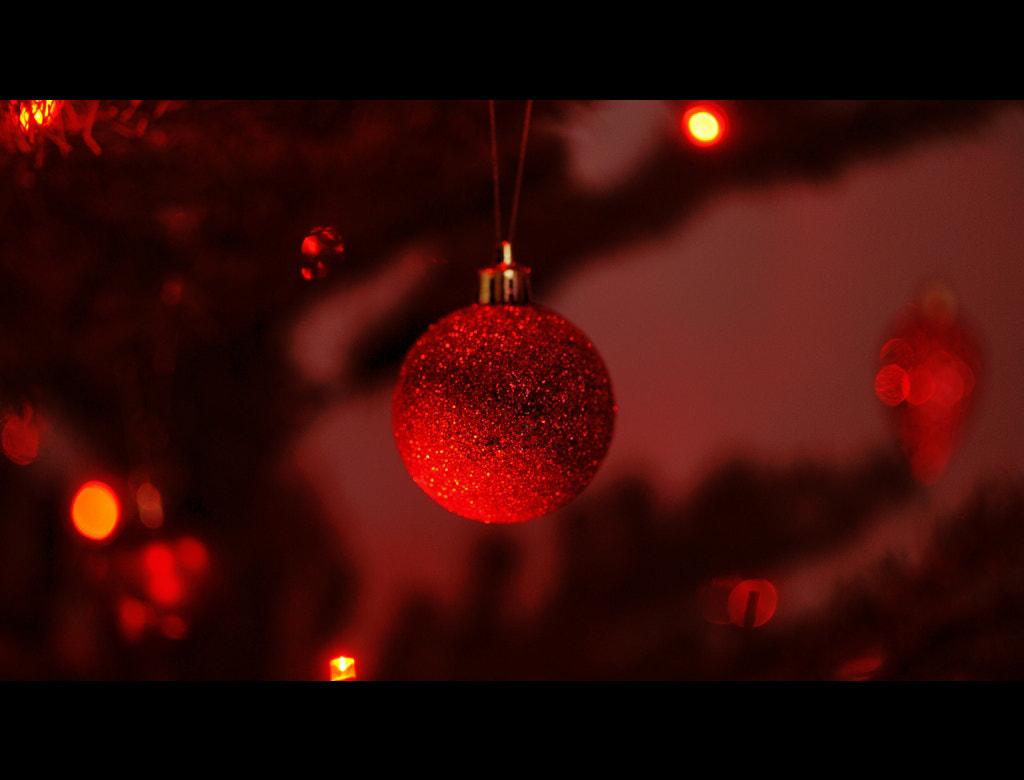 Photograph Christmas on our planet... by Almqvist Photo on 500px
