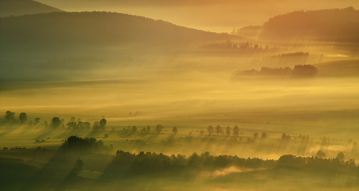 Photograph morning by Lukasz Lewandowski on 500px
