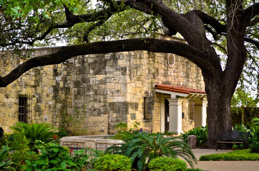 Near the Alamo