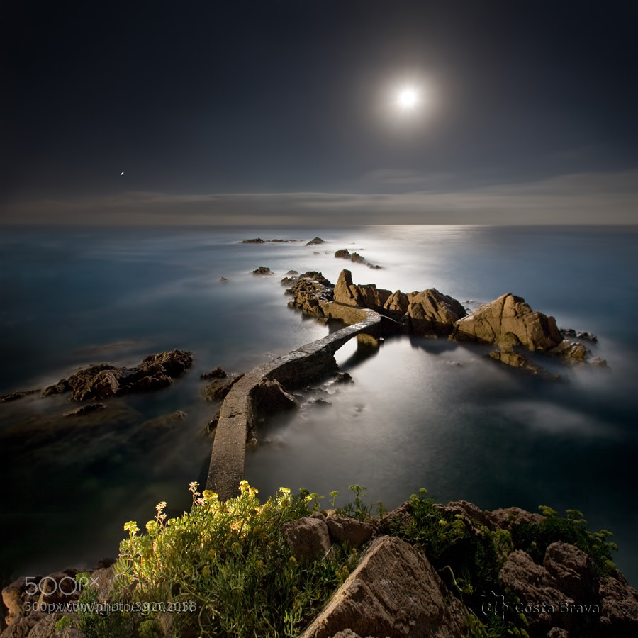 Photograph Costa Brava, live nature 26 by Jordi Gallego on 500px
