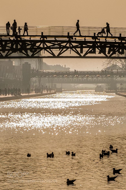 Photograph Walk over Ducks by Jérôme Gauthié on 500px