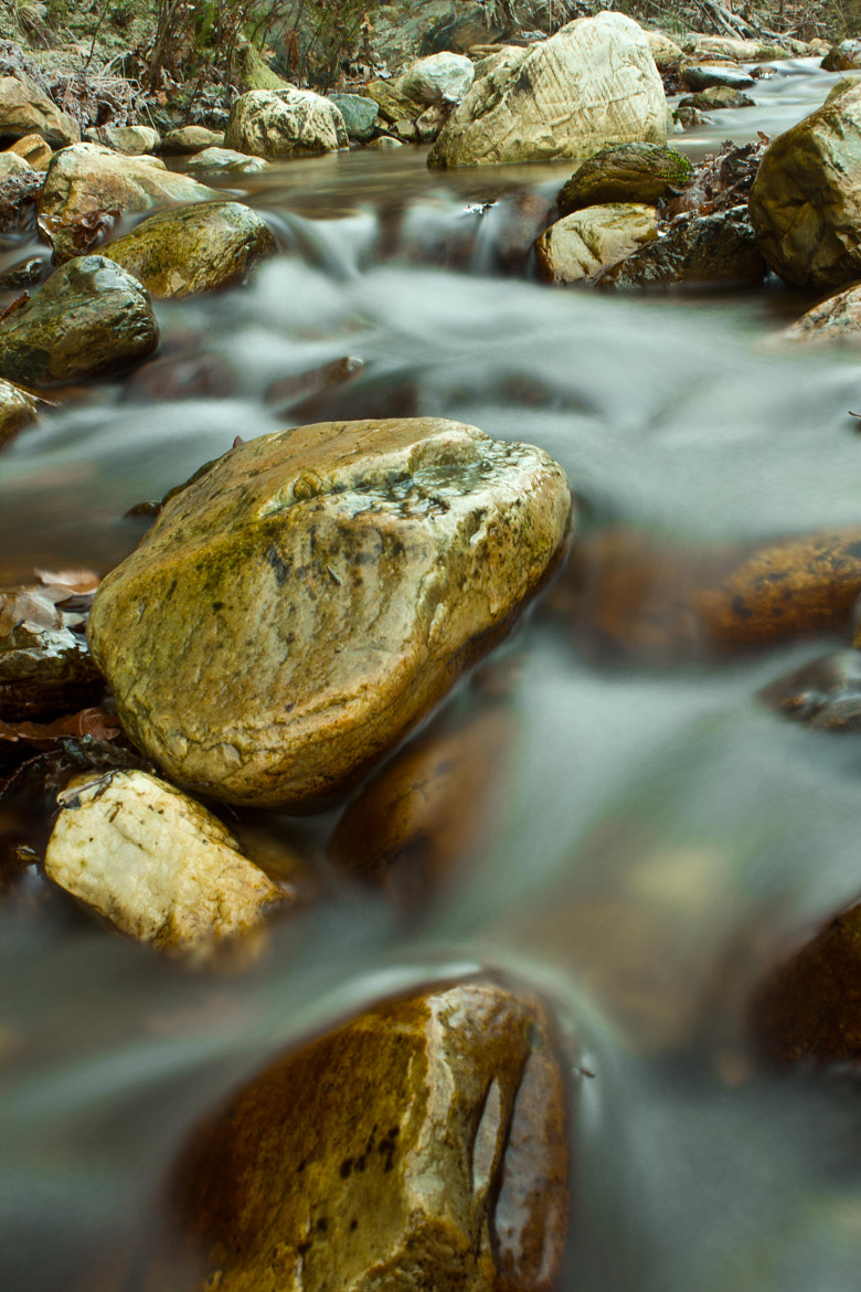 Photograph Stone in the water by miguel gonzález on 500px