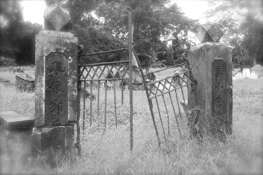 Bukit Brown Cemetery Singapore