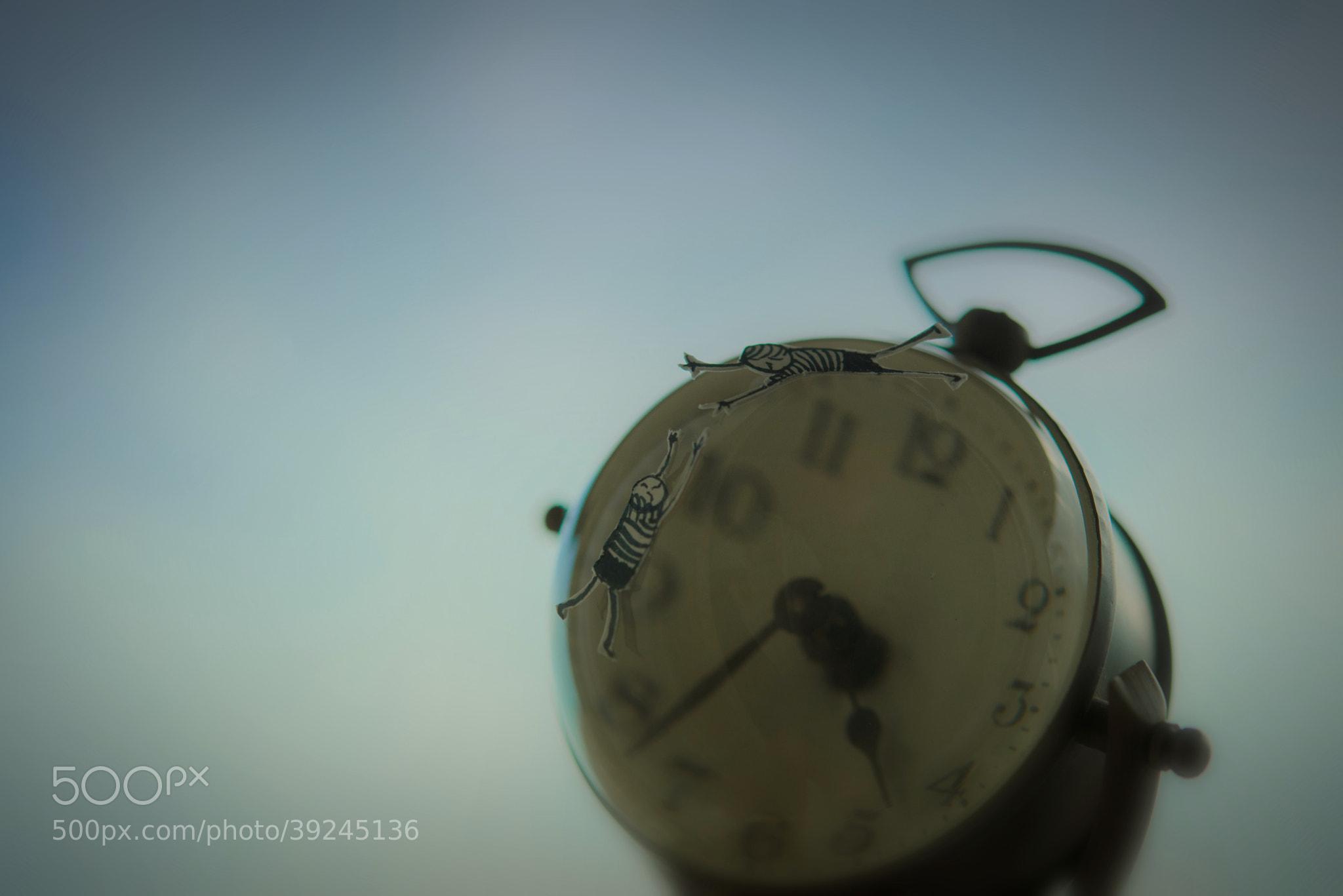 Photograph Hurry up! by Kouichi Chiba on 500px