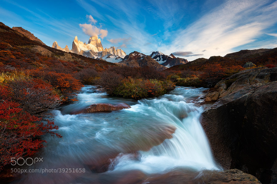Photograph Los Glaciares Gardens by Hougaard Malan on 500px