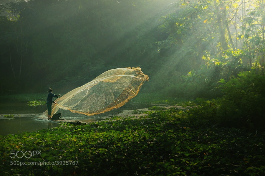 Photograph wonderful morning by asit  on 500px