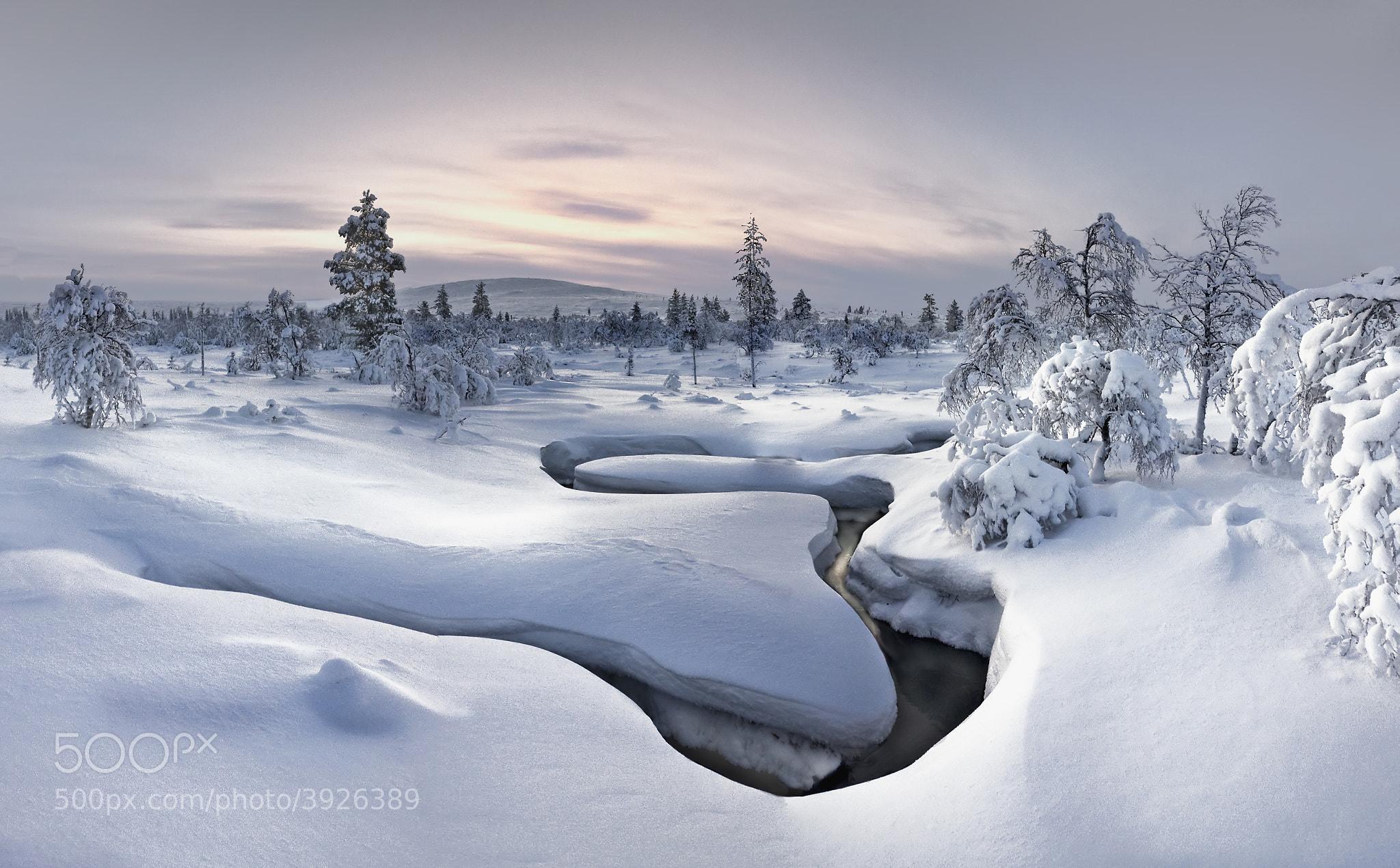 Photograph Lapland - Kiilopää by Christian Schweiger on 500px