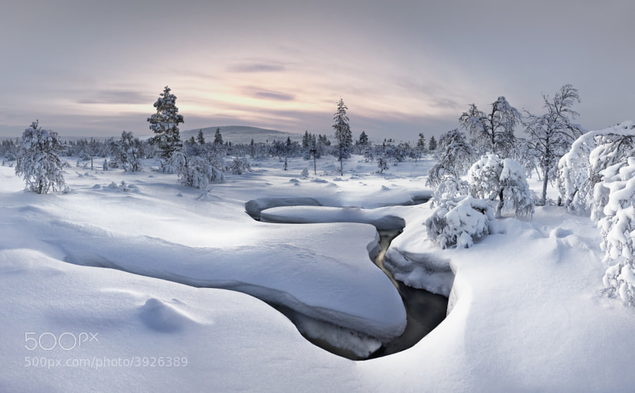Lapland - Kiilopää by Christian Schweiger on 500px.com