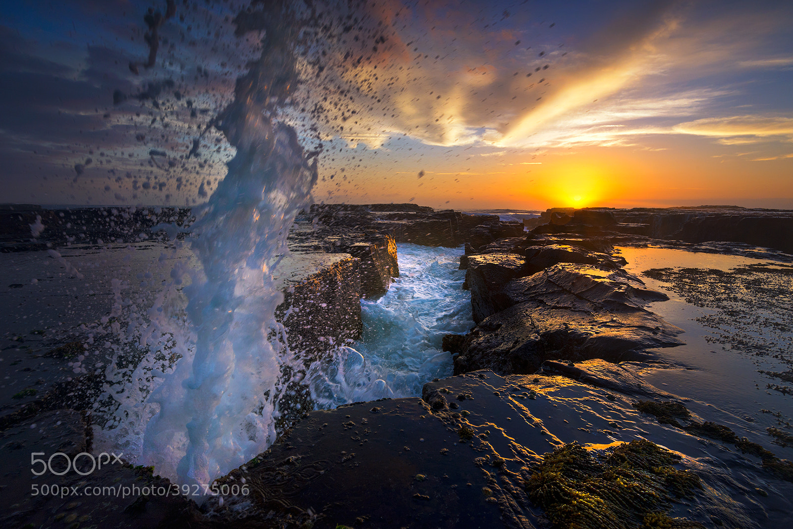 Photograph G' morning!! by Goff Kitsawad on 500px