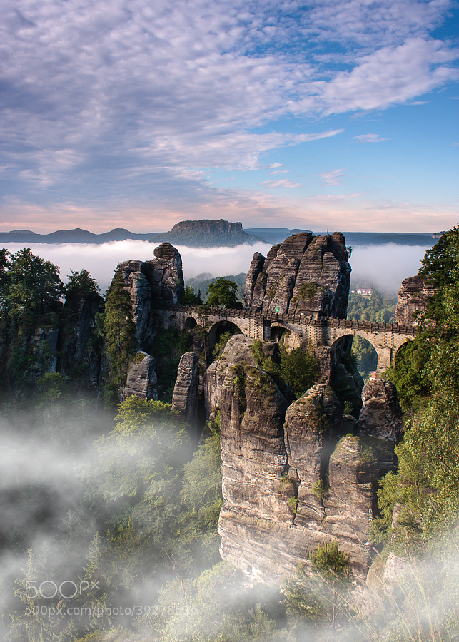 Morning mist in Saxon Switzerland