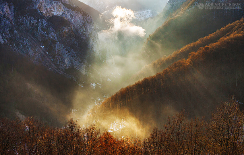 Photograph Early morning by Adrian Petrisor on 500px