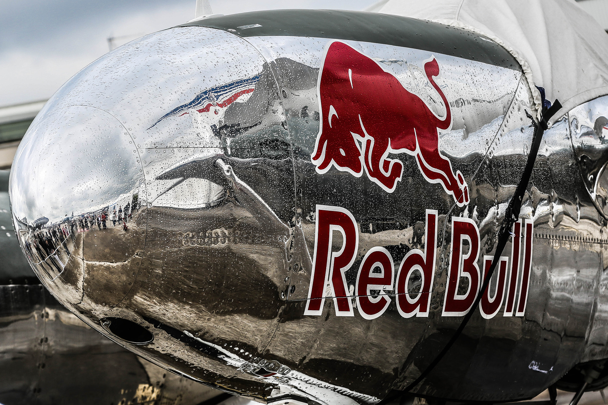 Photograph Red Bull gives you wings by Bruno Vandevelde on 500px