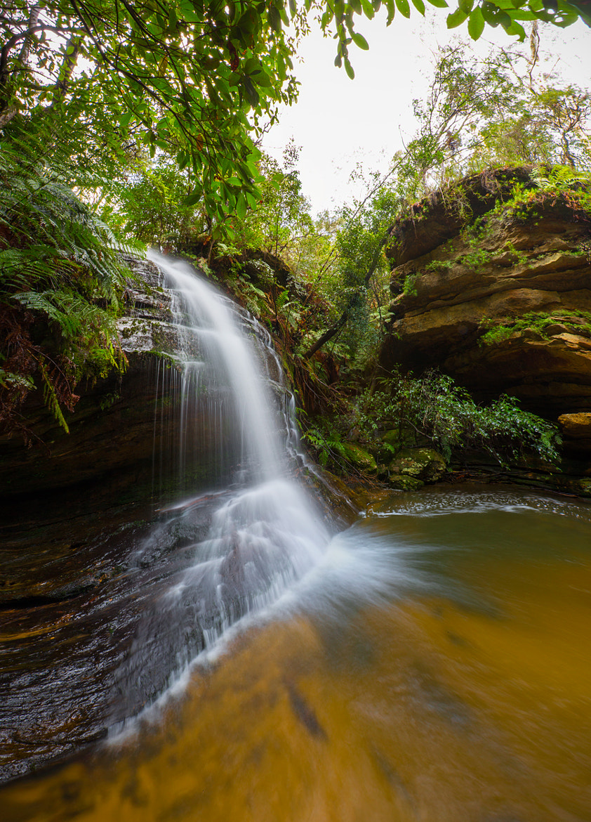 Photograph Gordon Falls, Blue Mountains NSW, Australia by Carlos Orue on 500px