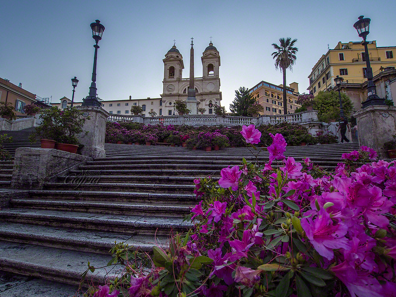 Photograph Bloom at Spanish Steps by Manish Gajria on 500px