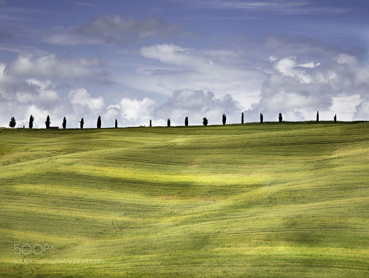 Photograph In a line by nick mangiardi on 500px
