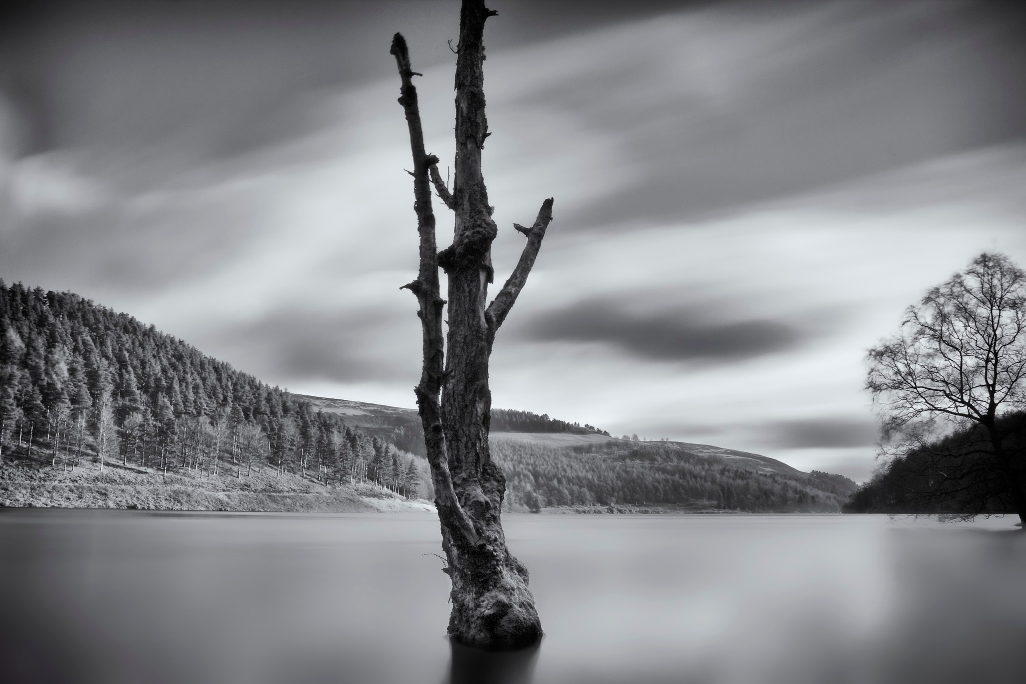 Photograph Reaching out II; Derwent Reservoir by Duncan Green on 500px