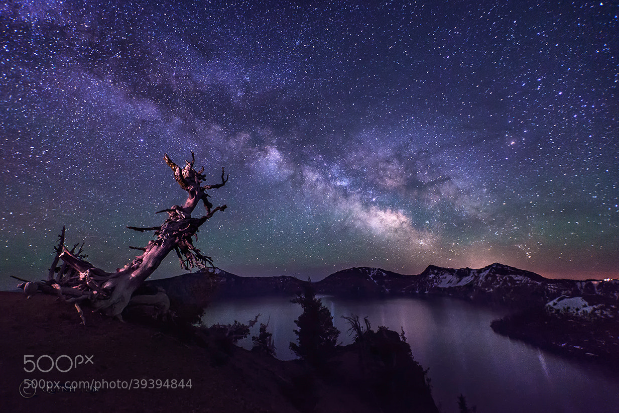 Photograph Starry Night by Quynh Ton on 500px